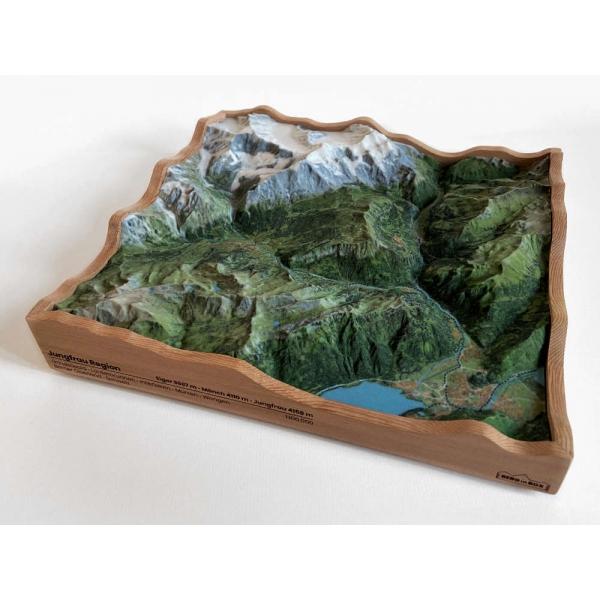 Jungfrau Region • Berner Oberland, Zwitserland